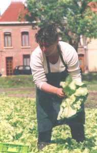 Marie-Hélène Parmentier