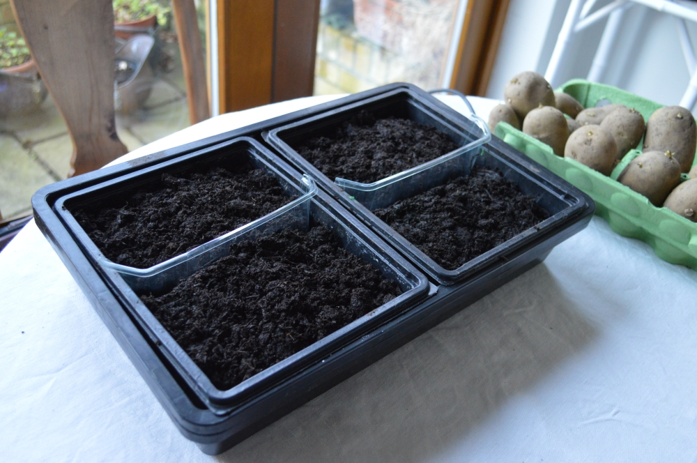soil warming