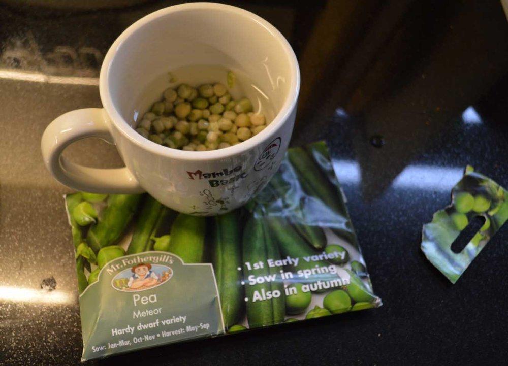 peas-low-4