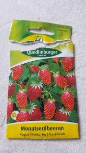Quedlinburg Seeds