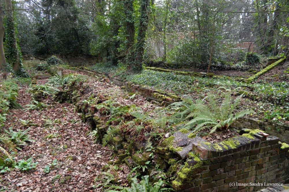 Warley spring 11