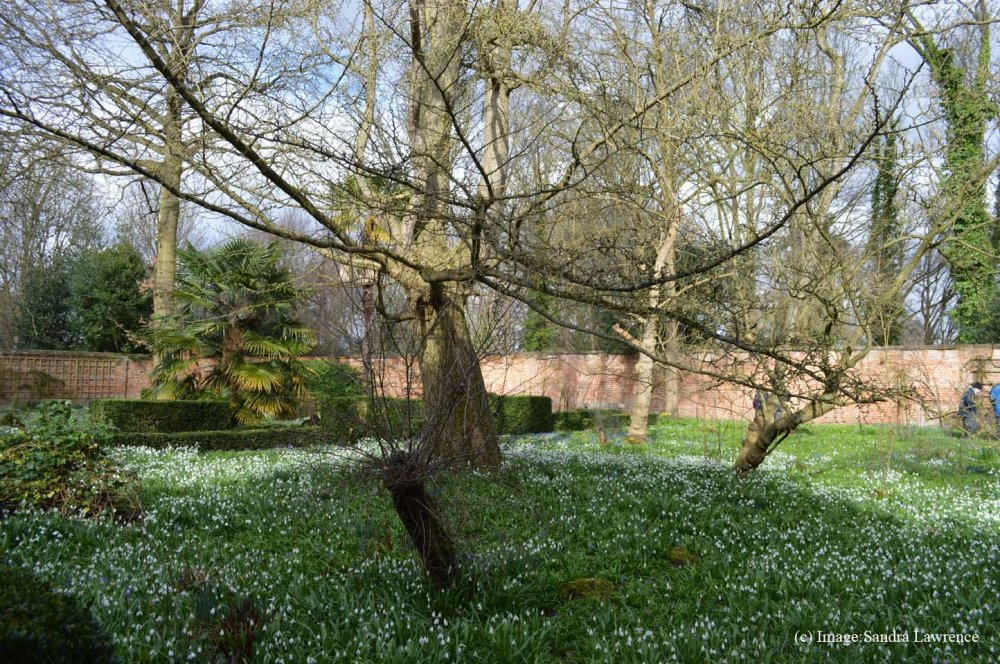 Warley spring 14