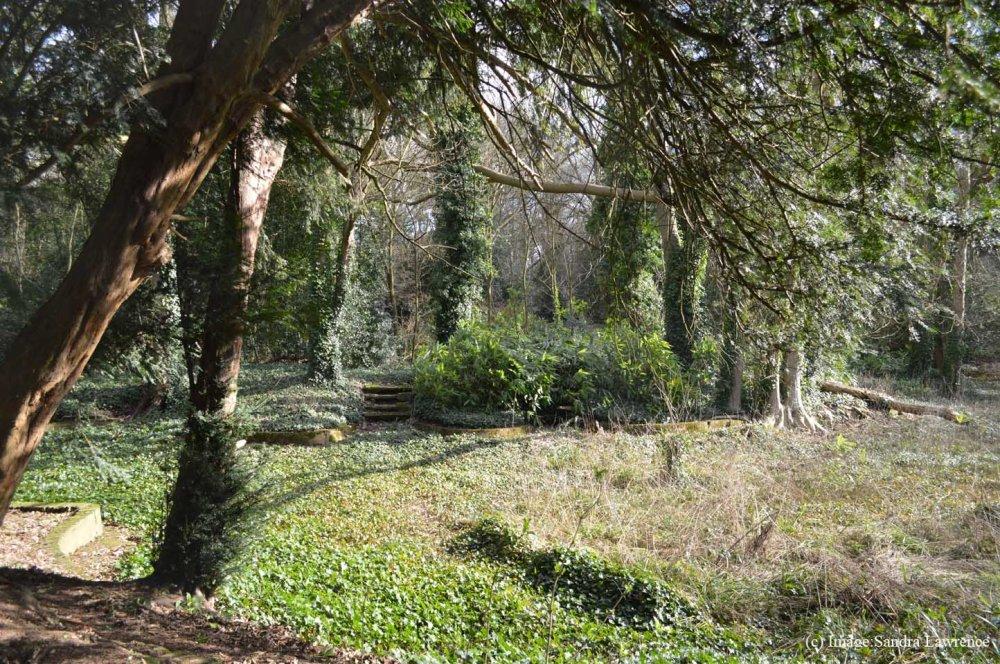 Warley Spring 22