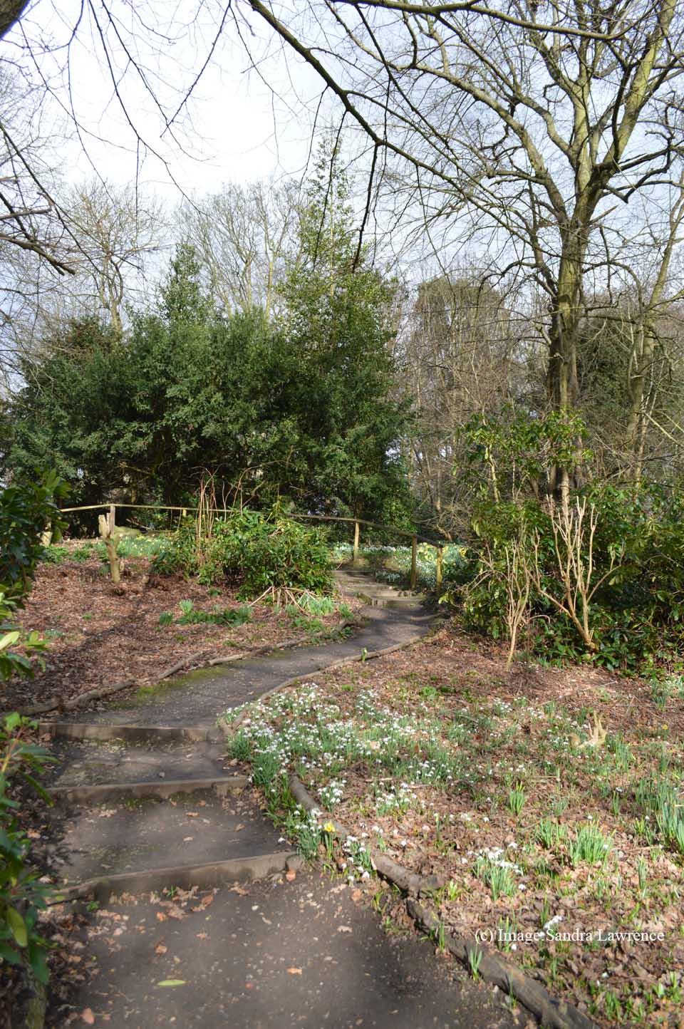 Warley spring 3