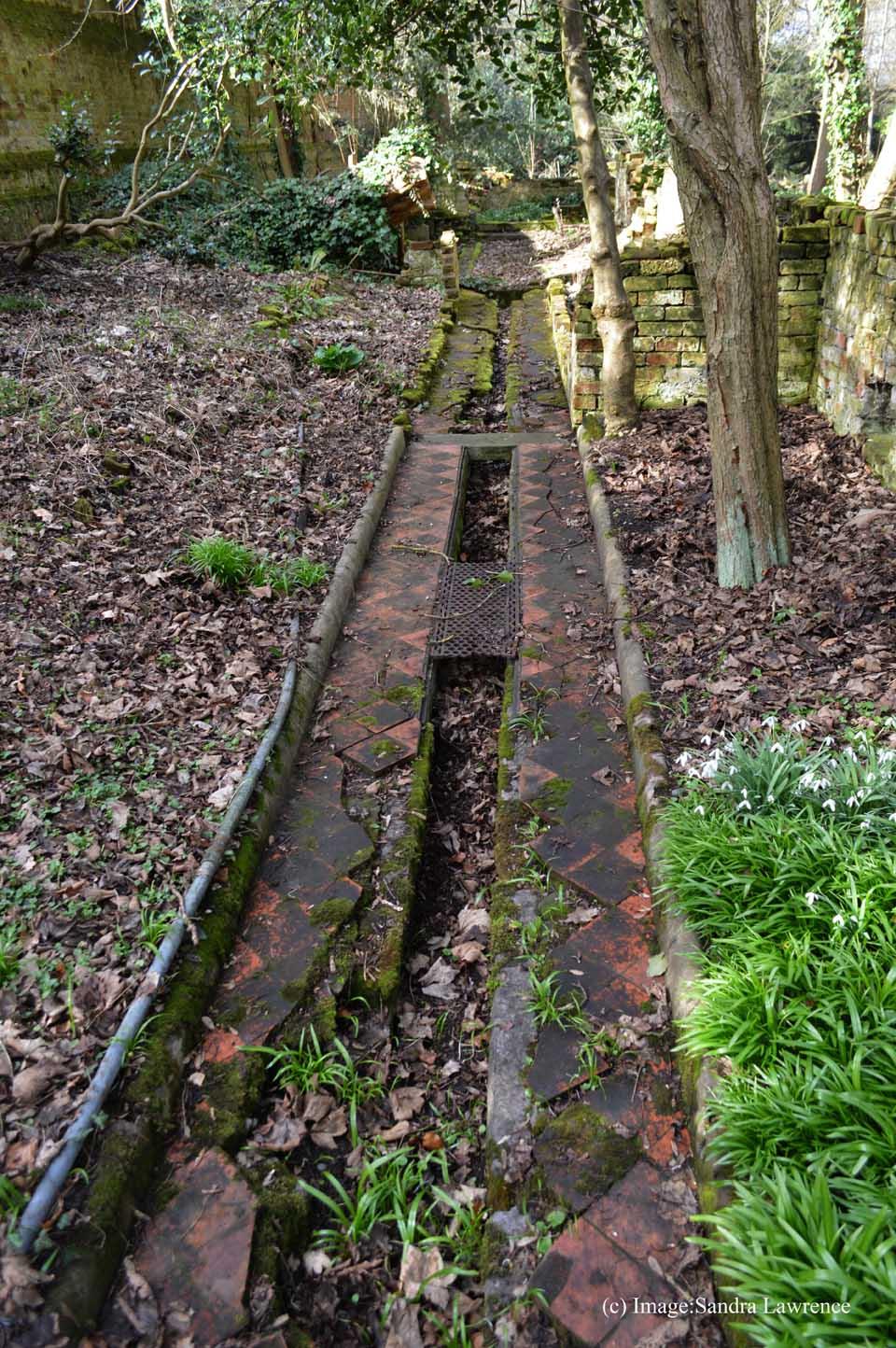 Warley spring 6