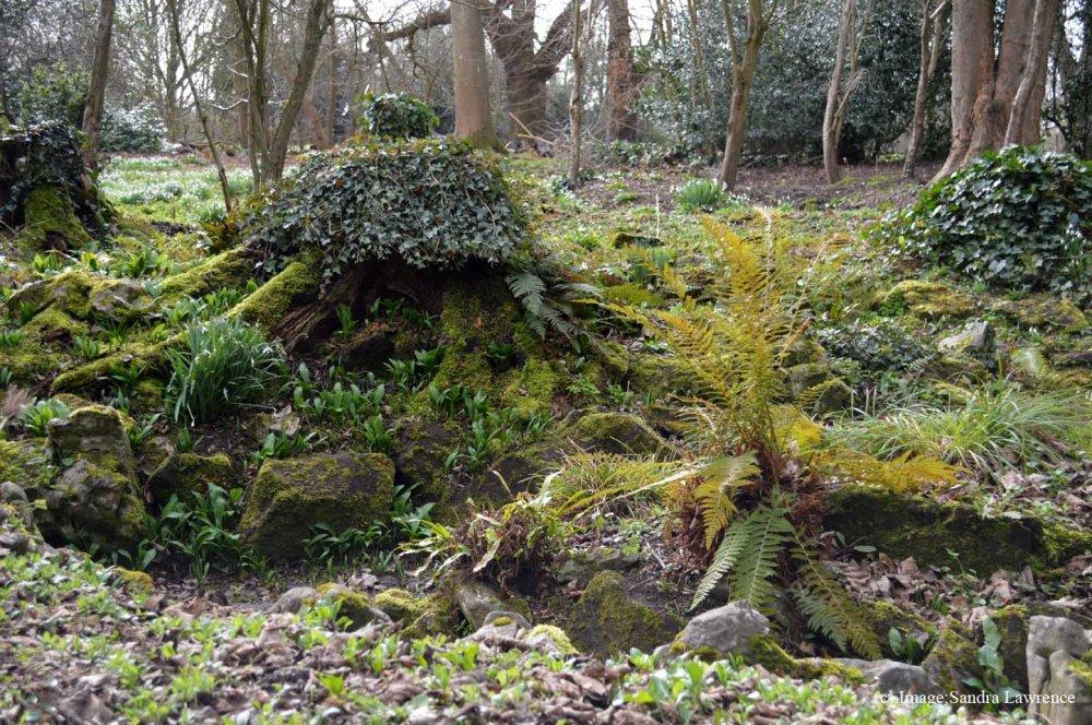 Warley spring 7